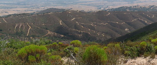 A view of OHV trails at Hollister Hills SVRA