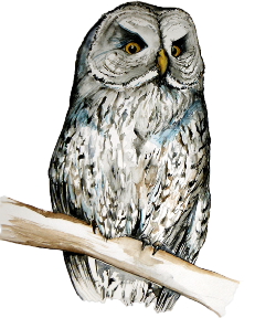 purdue owl review of related literature Brought to you by the purdue university online writing lab at   sources, see the purdue owl handout paraphrasing at  .